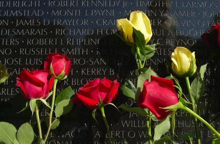 Vietnam Memorial Wall at the Woodring Wall of Honor and Veterans Park, Enid, Oklahoma, with red and yellow roses